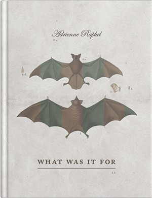 What Was It For by Adrienne Raphel, Rescue Press, 108 pages. $16