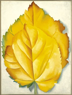 """2 Yellow Leaves (Yellow Leaves)"" by Georgia O'Keeffe"