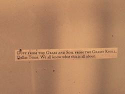 Dust from the Grassy Knoll, Dallas, Texas - MOLLY ZAPP
