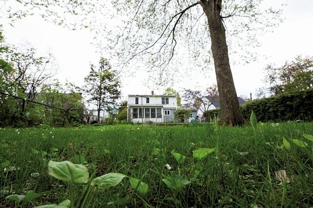 Lawn in need of TLC - LUKE AWTRY