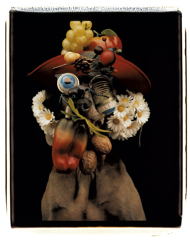 """""""Daisy Nut Ball"""" - COURTESY OF THE ARTIST AND SPERONE WESTWATER"""