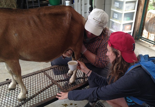 Me, receiving a latte on the hoof - STACEY BRANDT
