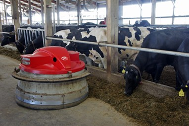 Lely Juno feed pusher - STACEY BRANDT