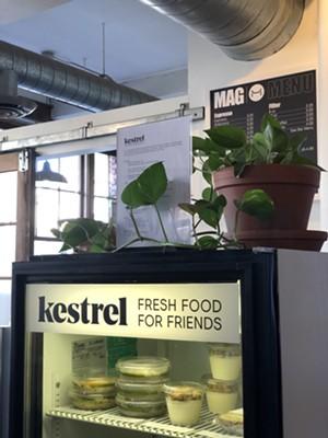 Kestrel food cooler at Maglianero - JORDAN BARRY