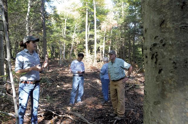 Addison Kasmarek (left) near a beech tree scored by bear claws - KEVIN MCCALLUM