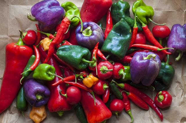Peppers from Cedar Circle Farm - HANNAH PALMER EGAN