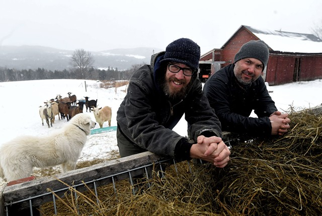Joey Nagy (left) with farmworker Joe Thompson at Marble Hill Farm in Fayston - JEB WALLACE-BRODEUR