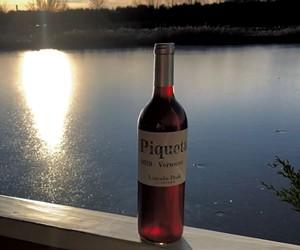 Lincoln Peak Vineyard's Piquette - JORDAN BARRY
