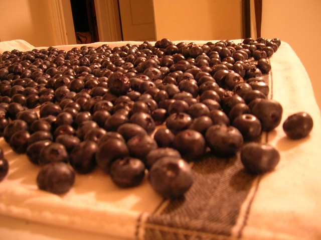 blueberry_spread.jpg