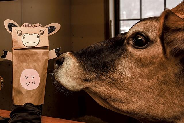Virtual tours at Woodstock's Billings Farm & Museum - COURTESY