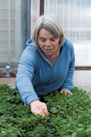 Julie Rubaud, owner of Red Wagon Plants - FILE: HANNAH PALMER EGAN