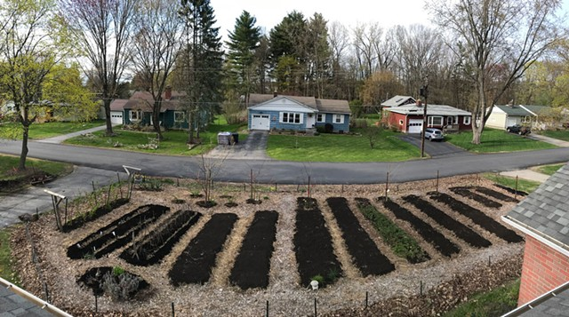 Ethan Joseph and Jessica DeBiasio's front-yard garden in spring - COURTESY OF ETHAN JOSEPH