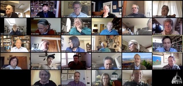 Members of the Vermont Senate meet online Tuesday - SCREENSHOT