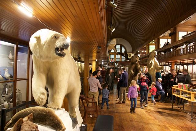 St. Johnsbury's Fairbanks Museum & Planetarium - MARGARET GRAYSON