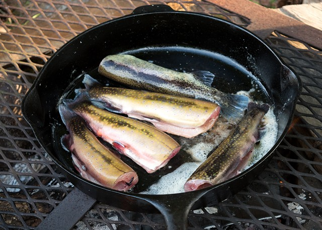 Trout cooking in a cast-iron pan - COURTESY OF VERMONT DEPARTMENT OF FISH & WILDLIFE