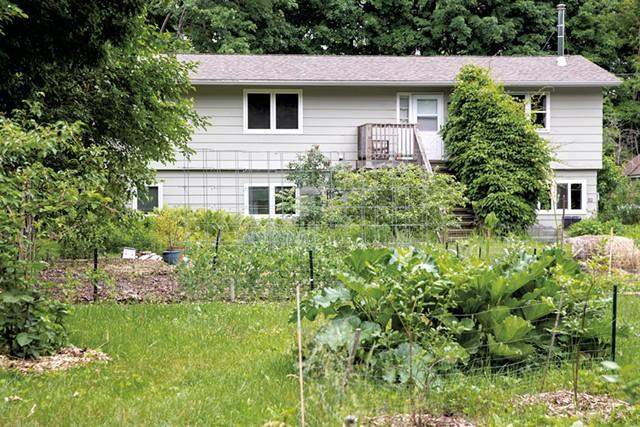 Matt Kolan's sprawling front garden in Queen City Park - JAMES BUCK