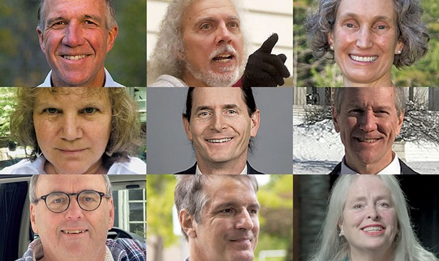 "Phil Scott (R), Ralph ""Carcajou"" Corbo (D), Rebecca Holcombe (D), Emily Peyton (R), David Zuckerman (D), Douglas Cavett (R), Patrick Winburn (D), John Klar (R), Cris Ericson (P) - COURTESY IMAGE"