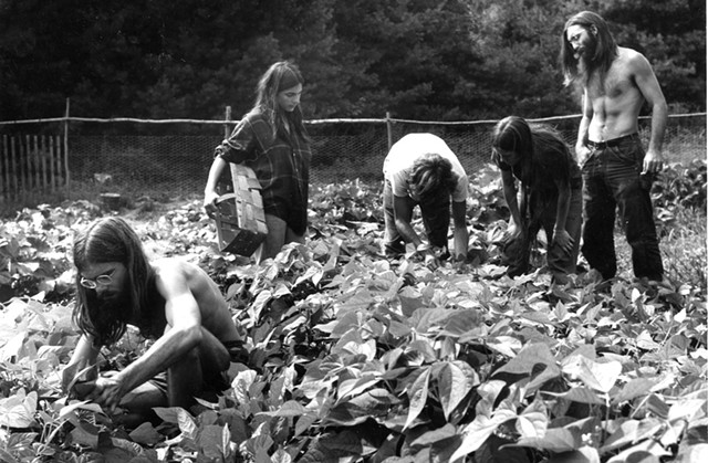Unidentified Vermont farm in the 1970s - COURTESY OF VERMONT HISTORICAL SOCIETY ARCHIVES