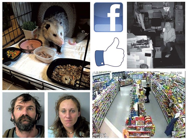A rescued opossum, - mug shots and a - photo of a crime - in progress from the - South Burlington - Police Department's - Facebook page