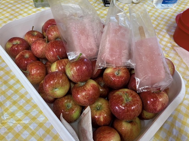 Apples and apple cider bars at Sweet Seasons Farm & Artisan Confections - MARGARET GRAYSON ©️ SEVEN DAYS