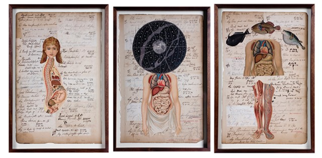 "From left to right: ""Baby,"" ""Universe"" and ""Fish"" from ""Professor Wolfson's Notebooks"" by Peter Thomashow - COURTESY OF PETER THOMASHOW"