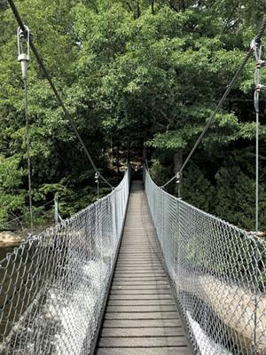 A bridge on the Trail Around Middlebury - SALLY POLLAK ©️ SEVEN DAYS