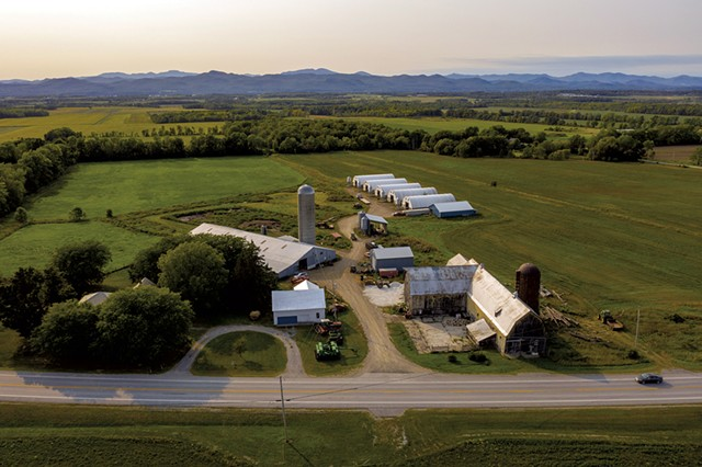 Ethan Gevry's pig farm in Addison - CALEB KENNA