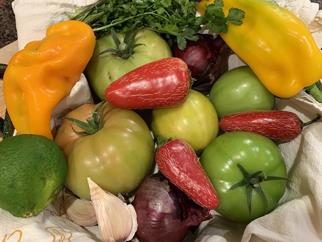 Ingredients for green tomato salsa - MELISSA PASANEN ©️ SEVEN DAYS