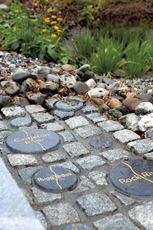 Rain garden in Burlington's City Hall Park - RENEE GREENLEE | COURTESY OF BURLINGTON CITY ARTS