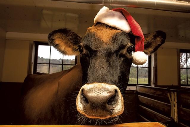 Christmas at the Farm - COURTESY OF BILLINGS FARM