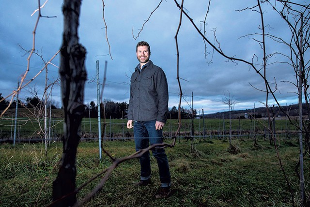 David Keck in the vineyard at Boyden Valley Winery in Cambridge - GLENN RUSSELL