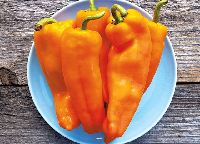 Lively Italian sweet peppers