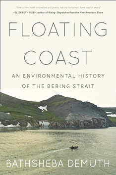 'Floating Coast' by Bathsheba Demuth - COURTESY OF THE GUND INSTITUTE