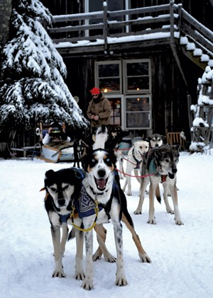 Sled dogs - COURTESY OF UMIAK OUTDOOR OUTFITTERS