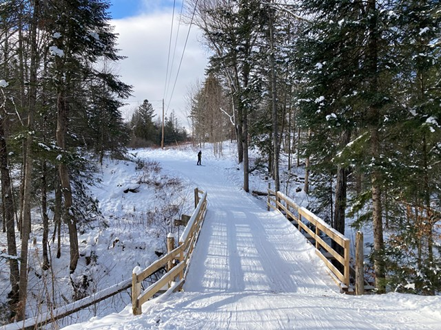 Cross-country skiing at Craftsbury Outdoor Center - MARGARET GRAYSON ©️ SEVEN DAYS