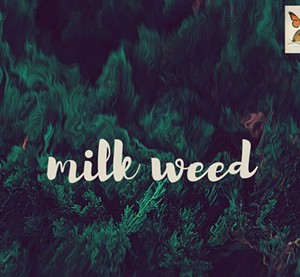 Milk Weed, Milk Weed - COURTESY