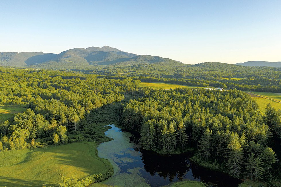 Brewster Uplands Conservation Trust, looking south toward Mount Mansfield - CALEB KENNA