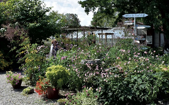Eileen Schilling watering plants at Horsford Gardens & Nursery - COURTESY OF HORSFORD GARDENS & NURSERY