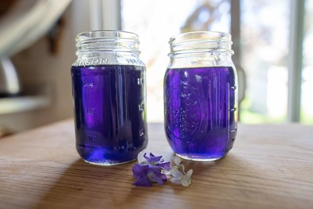 Violet syrup - JORDAN BARRY ©️ SEVEN DAYS