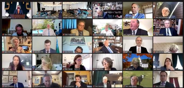 Vermont Senate in a virtual session - SCREENSHOT ©️ SEVEN DAYS