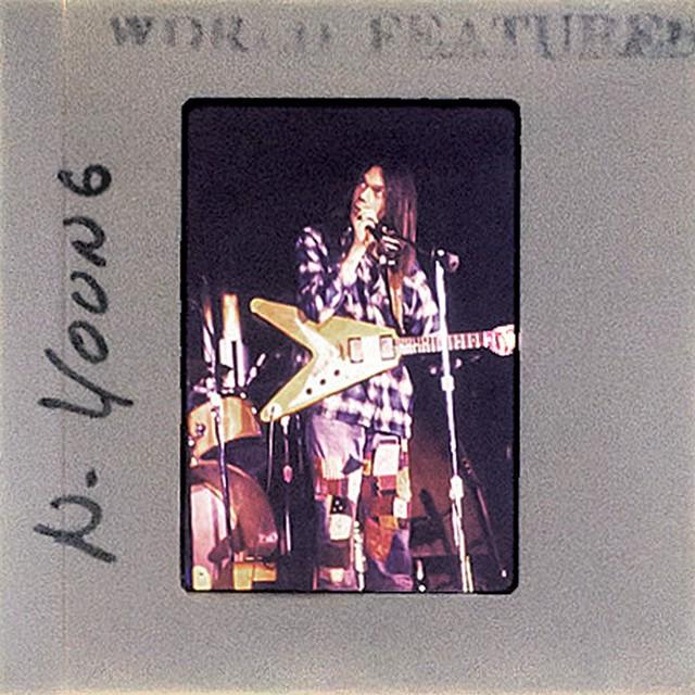 Neil Young - COURTESY OF TAMARA NICOLAI