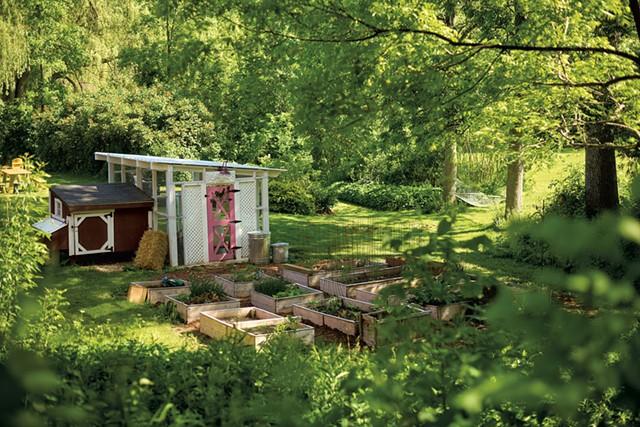 Deb Kehoe's backyard coop in Charlotte - BEAR CIERI