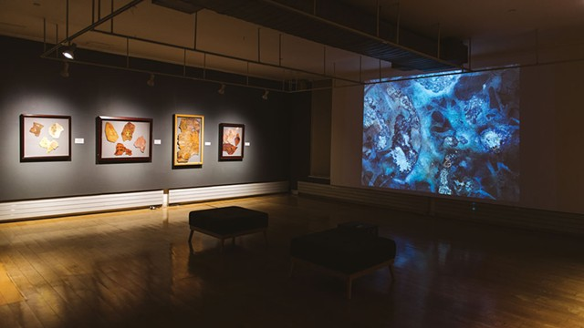 """Falling Into Language: A Travelogue"" at BCA Center - COURTESY OF SAM SIMON"