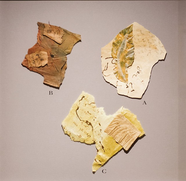 """Details from """"Falling Into Language: A Travelogue"""" installation - COURTESY OF SAM SIMON"""