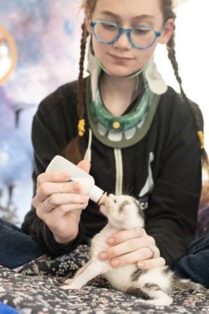 Kira feeding a foster kitten - COURTESY OF THE SERISKYS