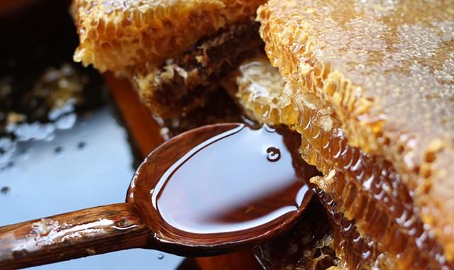 VT Golden Honey Festival - © JUEFRAPHOTO   DREAMSTIME