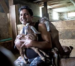 Rohit Adhikari with baby goats - JAMES BUCK