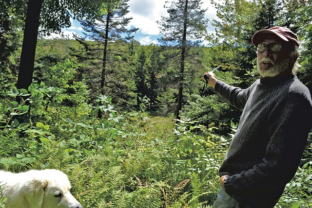 Frank Seawright pointing out the proposed location of the Windham turbine project - TERRI HALLENBECK
