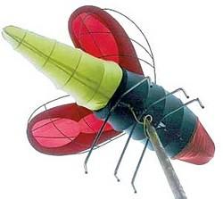 A firefly at Bonnaroo, circa 2003 - COURTESY OF RUSS BENNETT