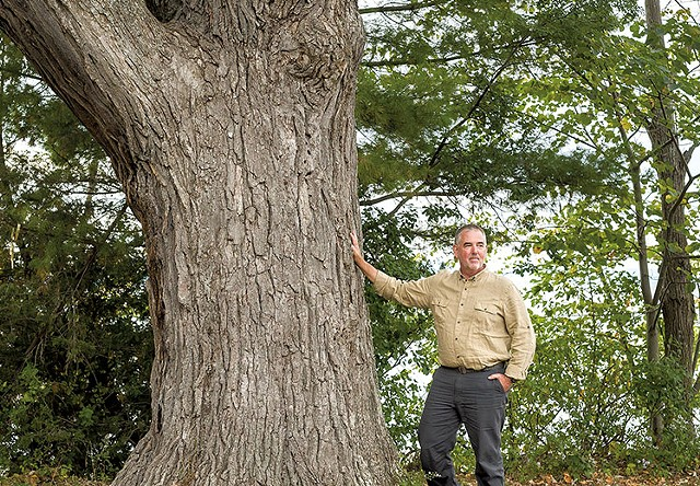 Arborist Warren Spinner with a 280-year-old white oak at Oakledge Park in Burlington - OLIVER PARINI